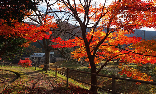 one-more-kyoto-pic_ohno